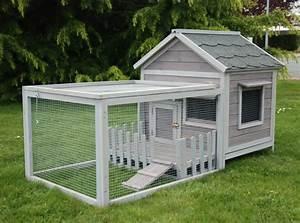 Cabane Pour Chat Exterieur Pas Cher : cage cochon d 39 inde d 39 ext rieur animaloo ~ Farleysfitness.com Idées de Décoration