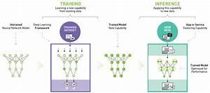 Nvidia Deep Learning Inference Platform Performance Study