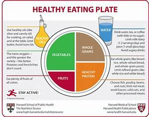 The New Food Pyramid is now a Plate called My Plate - The ...