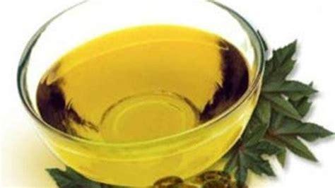 أخبار 24  تعرف على 6 استخدامات صحية لزيت الخروع
