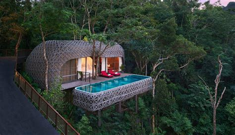 17 Amazing Tree House Designs From Around The World