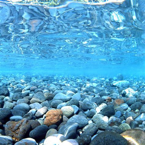hd aquarium fond peinture fond papier l vert mer rivi 232 re par 5 cm longues