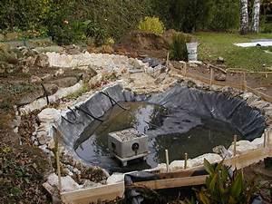 Bulleur Pour Bassin : 25 best ideas about bache bassin on pinterest bache ~ Premium-room.com Idées de Décoration
