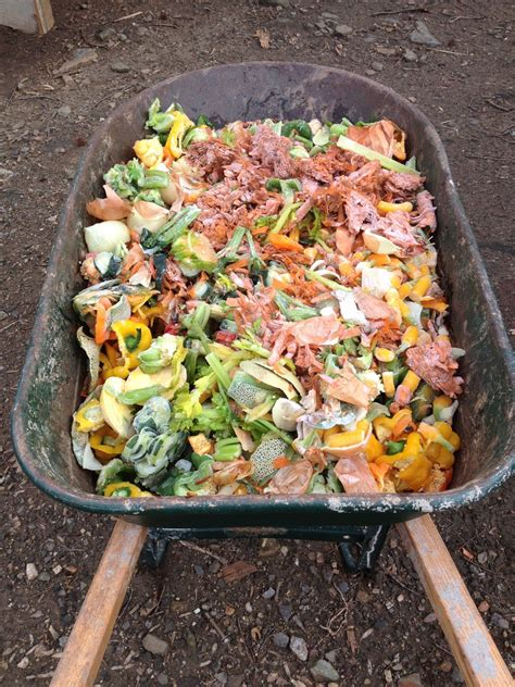 worms worm composting food compost feed garden wiggler wigglers vermicomposting farm bin scraps vermiculture overview eat foods feeding earthworm earthworms