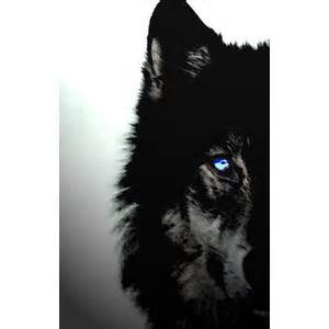 The Rising of Black Wolf: Courage to Walk Alone ...