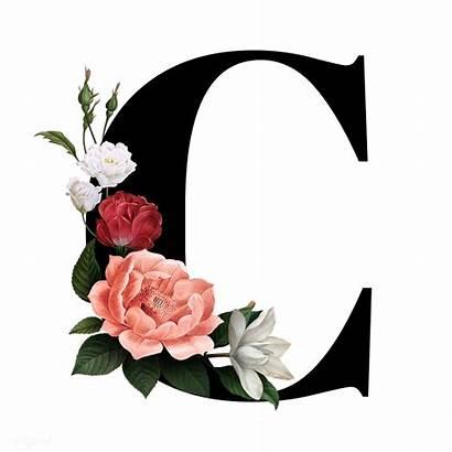 Letter Floral Transparent Font Alphabet Elegant Classic