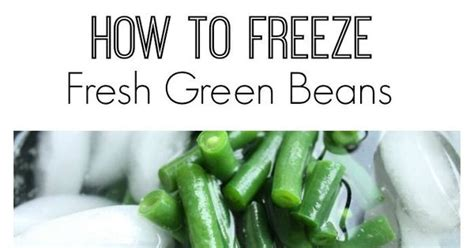 how to preserve green beans how to freeze fresh green beans fresh green green beans and beans