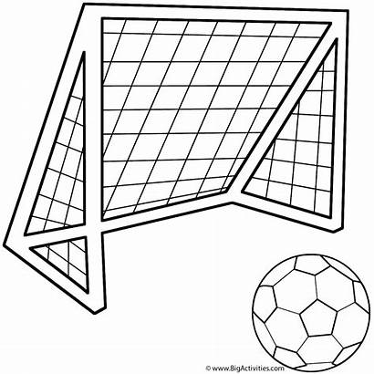 Coloring Ball Soccer Cup
