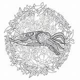 Cuttlefish Coloring Pages Template sketch template