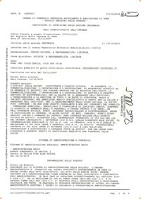 certificato camerale certificato camera  commercio