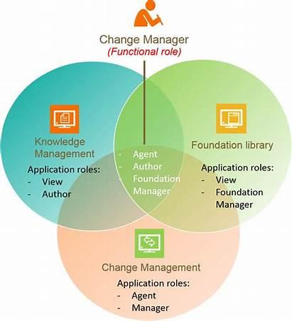 Functional Role Bmc Roles Benefits Concept Helix