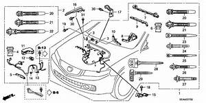 Acura Tsx Engine Wiring Diagram