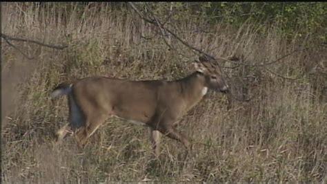 hunters concerned  disease killing hundreds  pa
