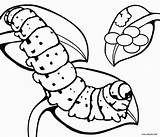 Caterpillar Coloring Pages Butterfly Printable Cocoon Egg Hungry Very Cool2bkids Animal Eggs Print Insect Drawing Printables Clipartmag Colours Getcolorings Getdrawings sketch template