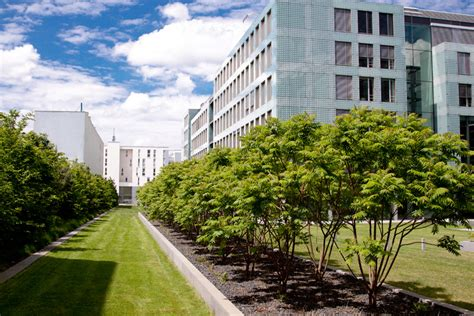 Garten Und Landschaftsbau Ausbildung Dresden by Saule Dresden Stellenangebot Ausbildung Und Lehre Als