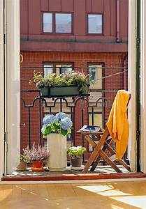 Hortensien Pflege Balkon : 29 ideen f r balkongestaltung den balkon mit pflanzen ~ Lizthompson.info Haus und Dekorationen
