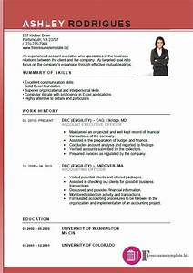 account executive resume template free resume With free executive resume templates