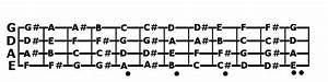 Explained  Bass Guitar Notes  Fretboard Radius And Neck