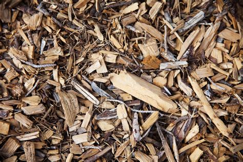 wood chip mulch wood chips for mulch sonorantreesvc com