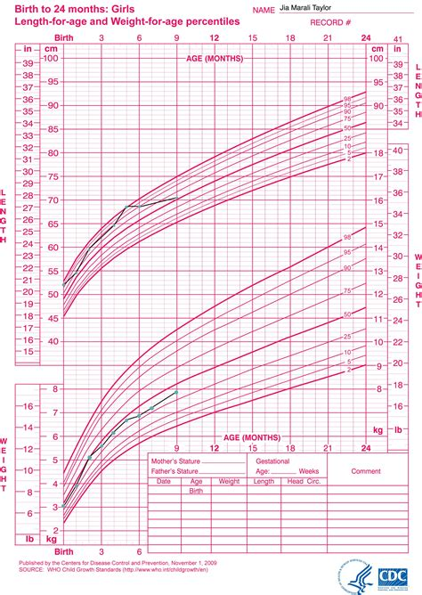 Little Sproutings Your Childs Growth Charts Explained