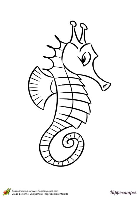 Coloriage d un hippocampe curieux