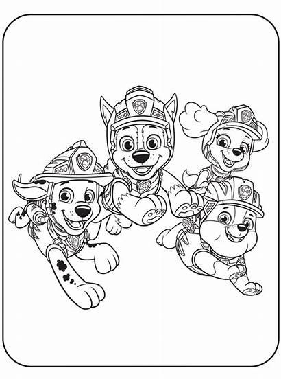 Team Patrol Paw Rescue Dino Coloring Fun