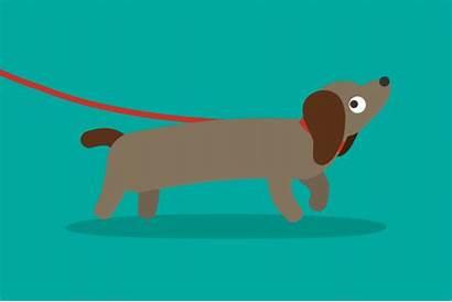 Sausage Dog Animated Walking Gifs Dogs Dachshunds