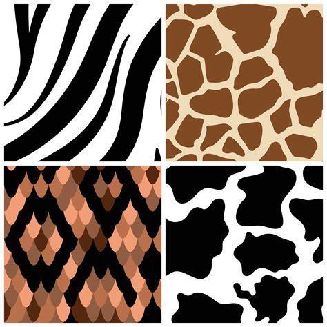Set of seamless animal print pattern vectors - Download ...