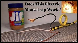 Does This Homemade Electric Mousetrap Work