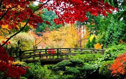 Japanese Garden Desktop 1080p Title