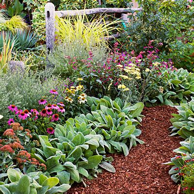 easy care flower beds 4 easy care flower bed ideas sunset