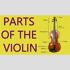 Parts Of The Violin And Bow  Carnatic Music Lessons Youtube