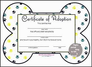 fake birth certificate template 4 birth certificate template just for fun