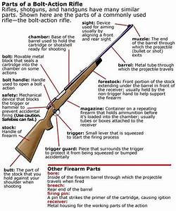 And My Favorite Long Gun Is  U2013 The Bolt Action Rifle