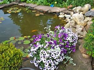 Teich Im Garten : ferienzimmer villa 39 t haasduin noord holland firma ~ Lizthompson.info Haus und Dekorationen
