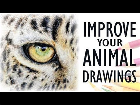 tips  drawing realistic animals
