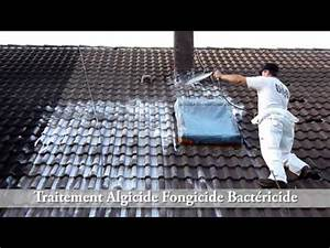 Anti Mousse écologique : mousse r nover une maison ~ Edinachiropracticcenter.com Idées de Décoration