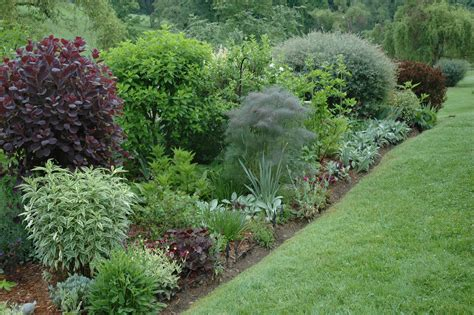 garden shrubs a time to prune a garden for all