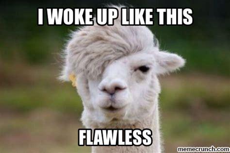 Llama Memes - flawless llama