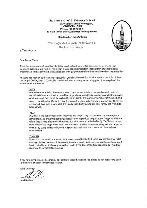 fifth grade essay outline buy resume design sle cover