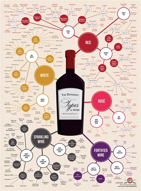different types the different types of wine daily infographic