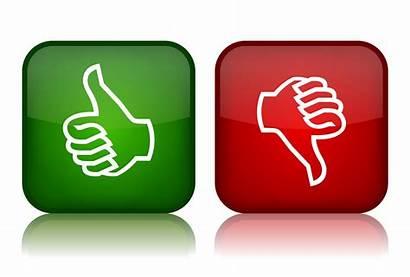 Feedback Experience Positive Negative Pedagogy Write Think