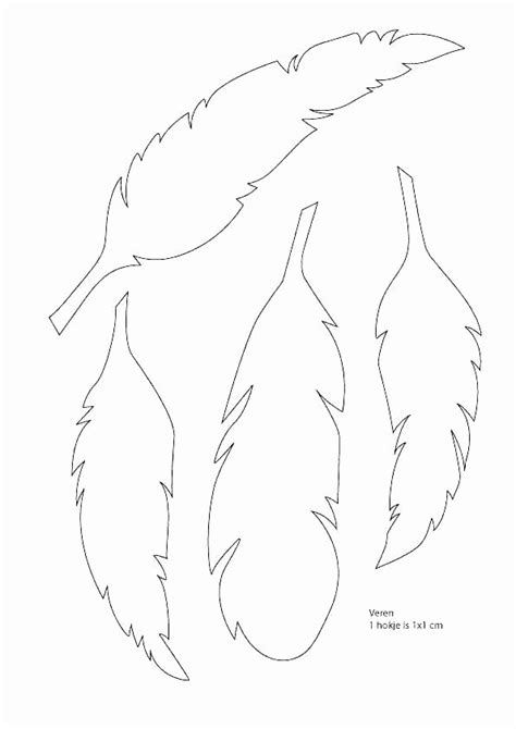 turkey feathers coloring page feather template feather