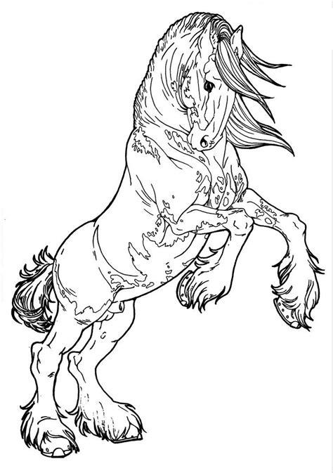 Patterned Clydesdale by AppleHunter on DeviantArt   Horse