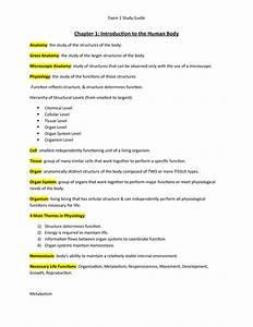 Exam 1 Study Guide - Biol 2113 Anatomy And Physiology I