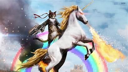 Unicorns Habits Unicorn Happy Success Shank Feel