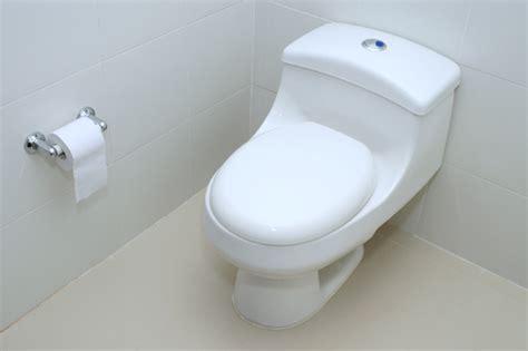 comment entretenir des wc chimiques