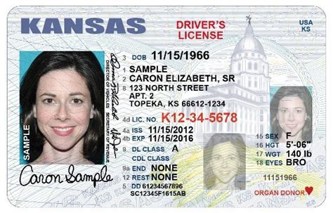 Restricted Driver's License Application Now Available Online