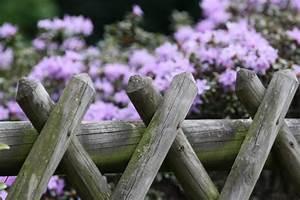 Grünspan Entfernen Holz : gr nspan entfernen von holz stein metall kunststoff so geht 39 s ~ Eleganceandgraceweddings.com Haus und Dekorationen