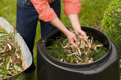 How To Backyard Compost by Tips For Composting Success Metro